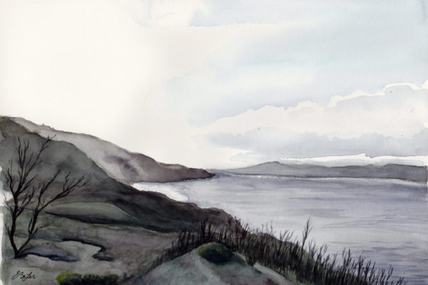 The Darker Side of Maui is a watercolor of the dark, volcanic area of Maui in Hawaii by artist Esther BeLer Wodrich