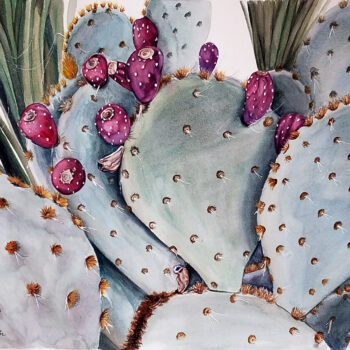 """Cactus Fruit"" is a watercolor of a prickly pear cactus with red fruit by artist Esther BeLer Wodrich"