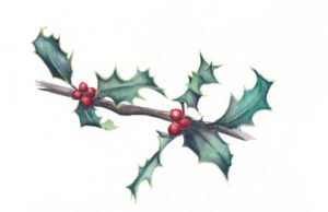 7 Holly Leaves - the Seventh Day of Christmas watercolor by artist Esther BeLer Wodrich