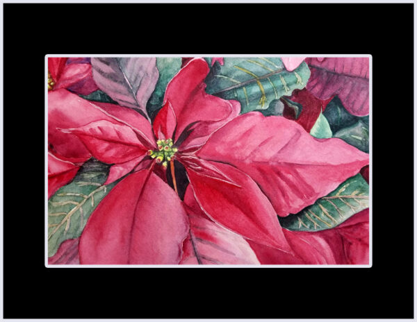 """Poinsettia"" is an original Christmas watercolor of red and green leaves of a poinsettia plant by artist Esther BeLer Wodrich"