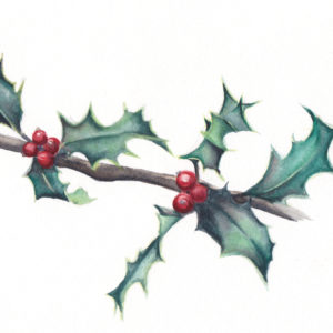 """7 Holly Leaves"" is an original Christmas watercolor of a holly leaves and berries from the 12 Days of Christmas series by artist Esther BeLer Wodrich"
