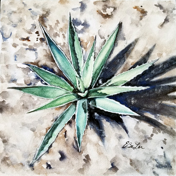 """Sprout"" is a desert botanical watercolor on aquabord of a small succulunt plant by artist Esther BeLer Wodrich"