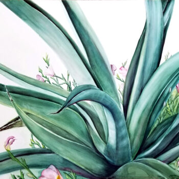 """Octopus Agave"" is a watercolor on Ampersand Aquabord of the desert botanical Octopus Agave along with pink flowers by artist Esther BeLer Wodrich"