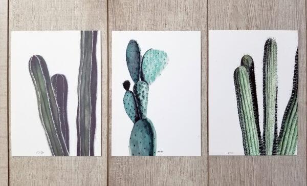 3 small cactus prints