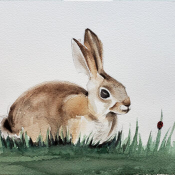Day 16, 2020 World Watercolor Month painting of young desert rabbit by artist Esther BeLer Wodrich