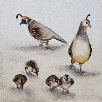 Day 30, 2020 World Watercolor Month is a painting of a family of quail by artist Esther BeLer Wodrich