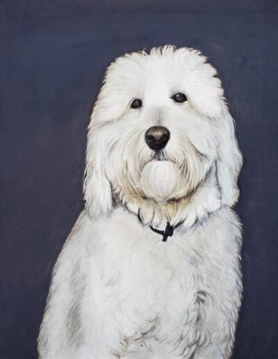 """Duke"" - custom pet portrait of a labradoodle"